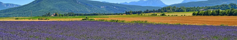 Case vacanze in Drôme, Provenza, molte ville con piscina privata