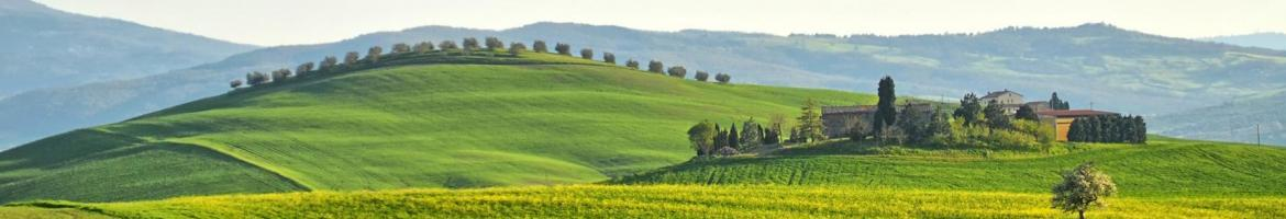 Book a nice holiday house in Pienza,