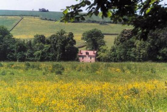 Holiday house in Héry, Burgundy - View from the garden