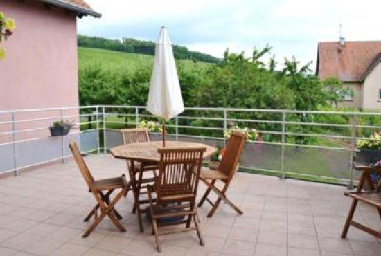 Holiday house in Nothalten, Alsace - Terrace