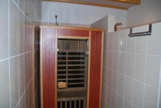 Holiday house in Nothalten, Alsace - Sauna