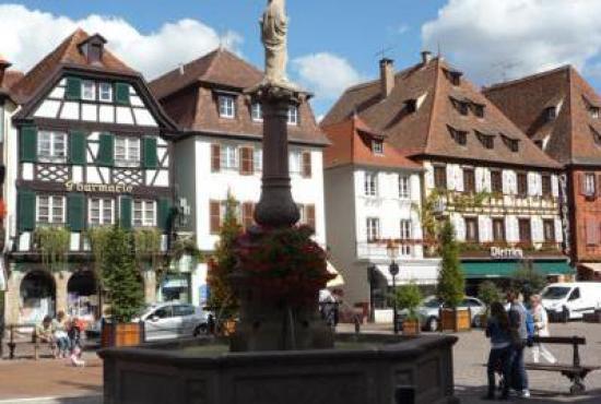 Holiday house in Nothalten, Alsace - Obernai