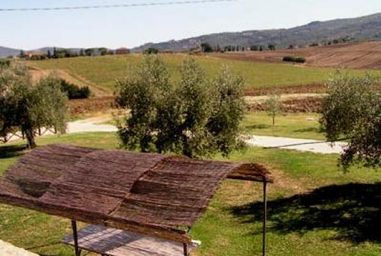 Vakantiehuis in Paciano, Umbrië - Uitzicht vanuit de woning