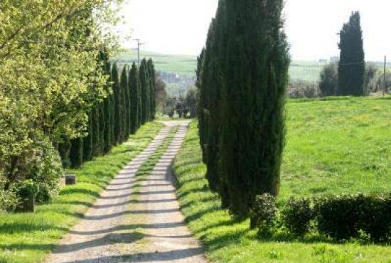 Holiday house in San Quirico d'Orcia, Tuscany - Drive