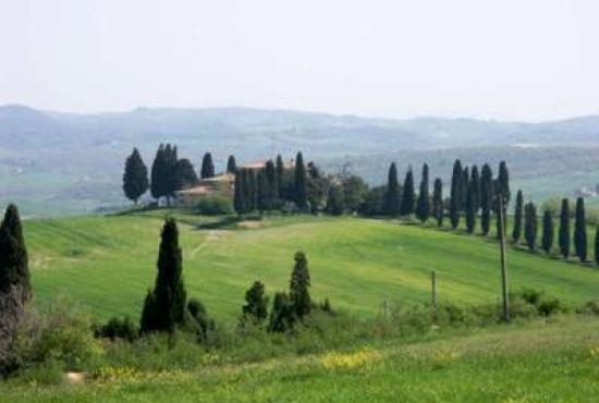 Casa vacanza in San Quirico d'Orcia, Toscana - legenda:4006:label