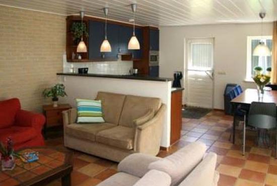 Vakantiehuis in Luttenberg, Overijssel - Woonkamer met zithoek, eethoek en open keuken