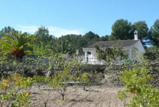 Vakantiehuis in Pedralba, Costa Azahar - Het huis met terrein