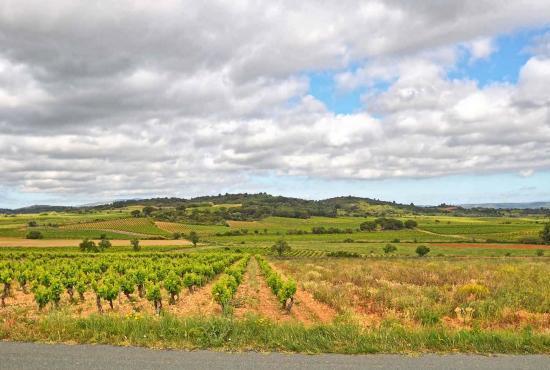 Casa vacanza in Boutenac, Languedoc-Roussillon - Boutenac - Paesagio