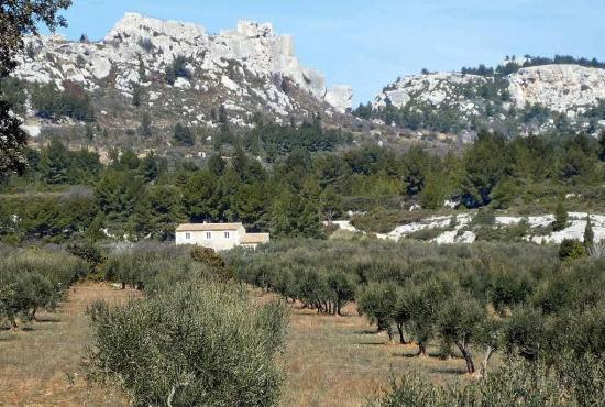 Holiday house in Saint-Rémy-de-Provence, Provence-Côte d'Azur - Les Alpilles