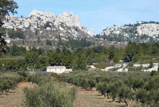 Vakantiehuis in Saint-Rémy-de-Provence, Provence-Côte d'Azur - Les Alpilles