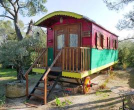 Vakantiehuis in Saint-Rémy-de-Provence, in Provence-Côte d'Azur.
