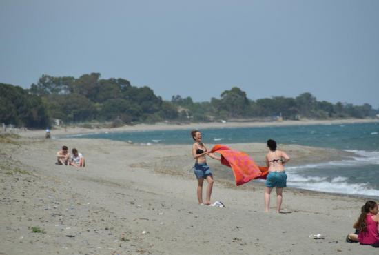 Holiday house in Cervione, Corse - Moriani Plage