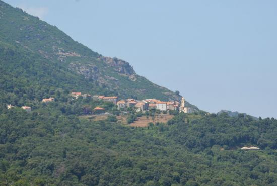Holiday house in Cervione, Corse - San Nicolao