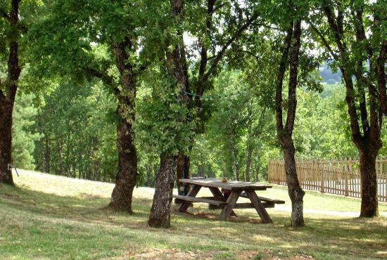 Vakantiehuis in Florimont-Gaumier, Dordogne-Limousin -