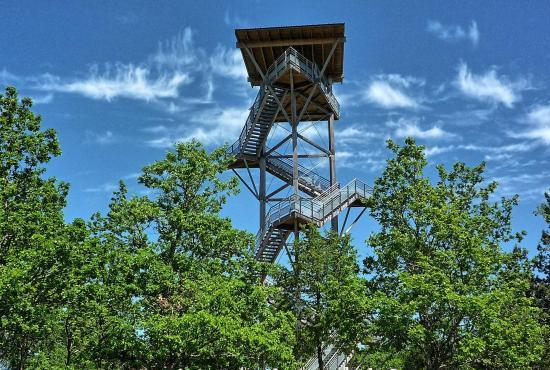 Vakantiehuis in Florimont-Gaumier, Dordogne-Limousin - Uitkijktoren op 2 km
