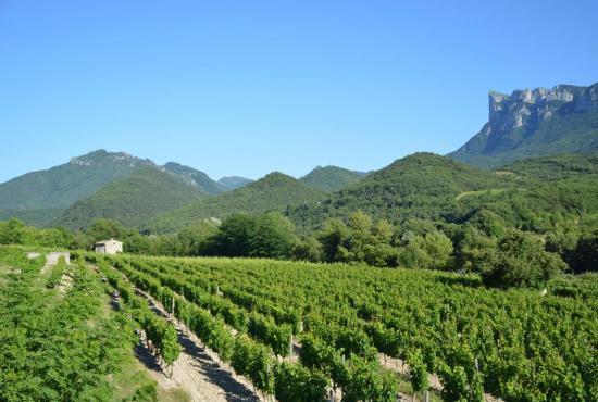 Ferienhaus in Die, Provence-Côte d'Azur - Die - Bergen