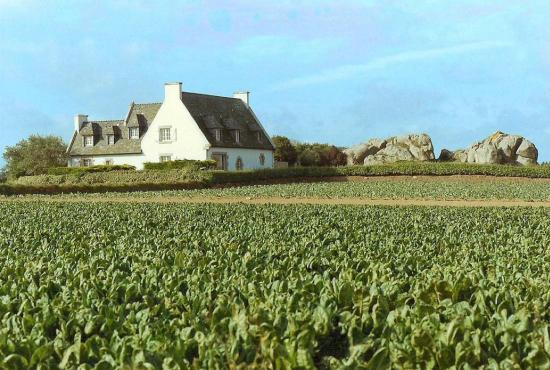Holiday house in Plounéour-Brignogan-Plages, Brittany -