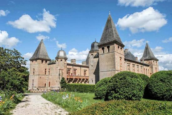Vakantiehuis in L'Isle-Jourdain, Midi-Pyrénées - Château de Caumont