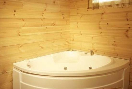Holiday house in Venosc, Alpes -