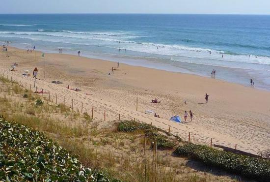 Holiday house in Biscarrosse-Plage, Aquitaine - Biscarrosse-Plage