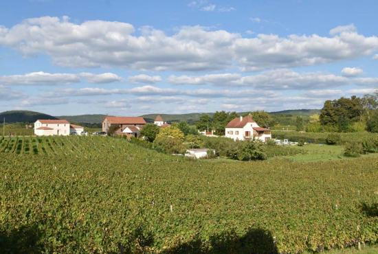 Ferienhaus in  Caillac, Dordogne-Limousin - Omgeving