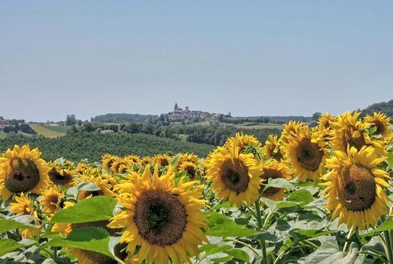 Location de vacances en Beaugas, Aquitaine - Saint Pastour