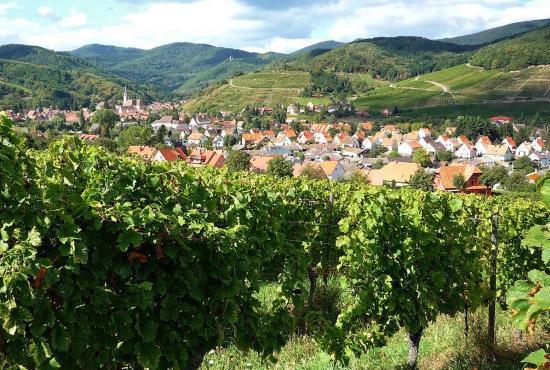 Location de vacances en Nothalten, Alsace - Andlau