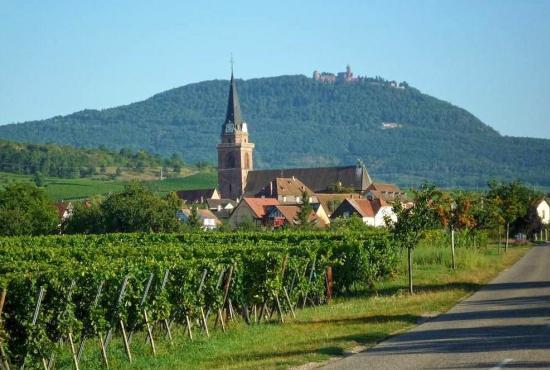 Holiday house in Bergheim, Alsace - Bergheim
