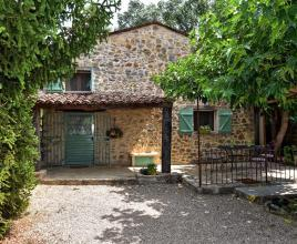 Holiday house in Montauroux with pool, in Provence-Côte d'Azur.