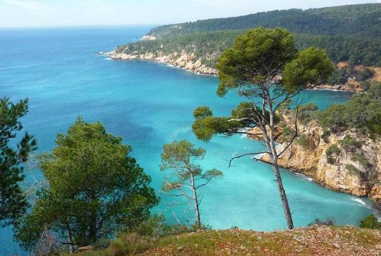Holiday house in Saint-Cyr-sur-Mer, Provence-Côte d'Azur - Bandol - Les Calanques