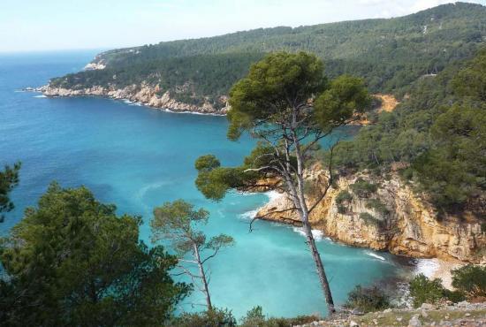 Holiday house in Nans-les-Pins, Provence-Côte d'Azur - Calanques Bandol