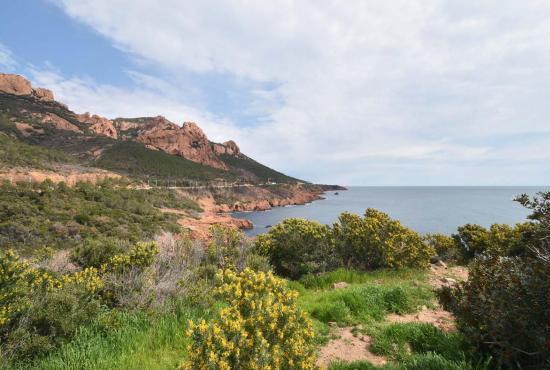 Location de vacances en Anthéor, Provence-Côte d'Azur - L'Esterel