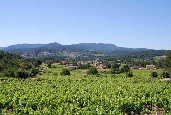 Holiday house in Vaison-la-Romaine, Provence-Côte d'Azur - Landscape near the house