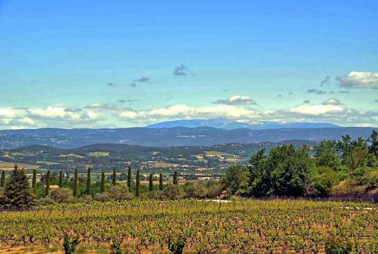 Vakantiehuis in Lacoste, Provence-Côte d'Azur - Luberon - Landschap