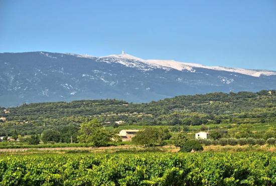 Location de vacances en Piolenc, Provence-Côte d'Azur - Mont Ventoux
