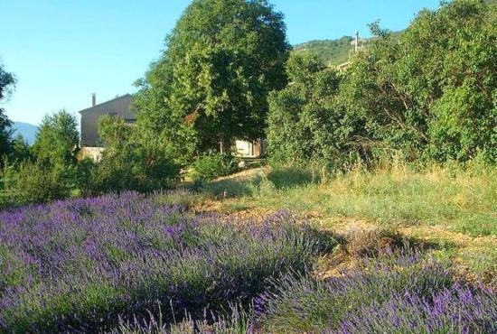Vakantiehuis in Saint-Jean-de-Sault, Provence-Côte d'Azur -