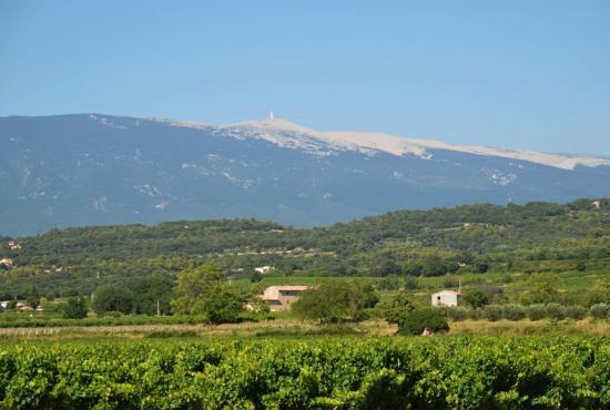Location de vacances en Mazan, Provence-Côte d'Azur - Mont Ventoux