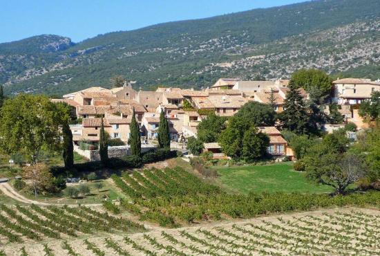 Vakantiehuis in Provence-Côte d'Azur - Bédoin - Les Baux