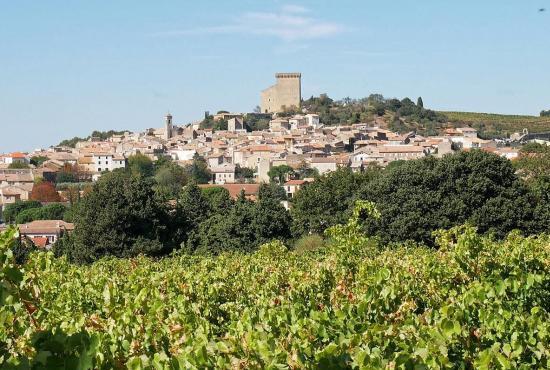 Vakantiehuis in Loriol-du-Comtat, Provence-Côte d'Azur - Châteauneuf-du-Pape