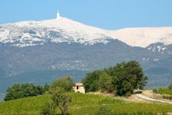 Holiday house in Mazan, Provence-Côte d'Azur - Mont-Ventoux