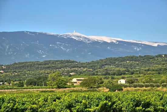 Vakantiehuis in Monteux, Provence-Côte d'Azur - Mont-Ventoux