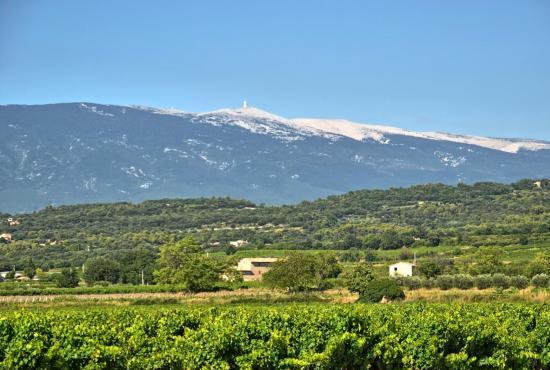 Holiday house in Caromb, Provence-Côte d'Azur - Mont-Ventoux