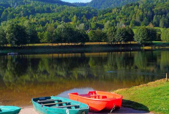 Holiday house in Rupt-sur-Moselle, Lorraine - Lac de Moselotte