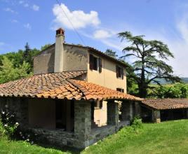 Holiday house in Bibbiena with pool, in Tuscany.