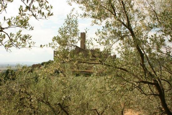 Location de vacances en Castiglion Fiorentino, Toscane - Vue sur château de Montecchio