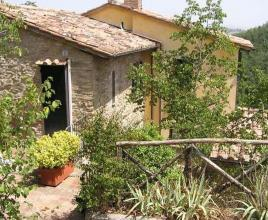 Holiday house in Spina with pool, in Umbria.