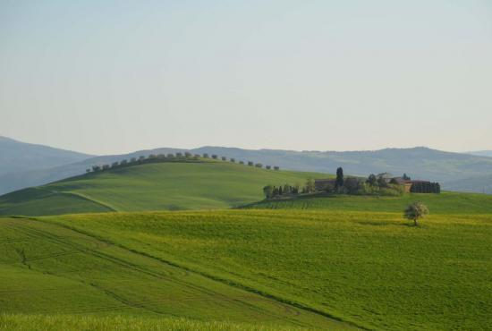 Holiday house in Contignano, Tuscany - Pienza - landscape