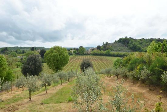 Holiday house in Montepulciano, Tuscany - View at the landscape