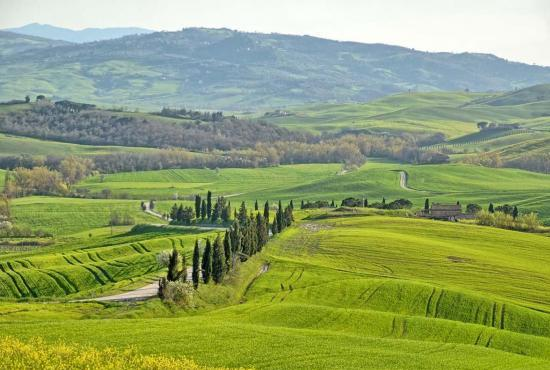 Holiday house in Montepulciano, Tuscany - Pienza - Landscape