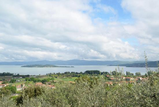 Holiday house in Montegabbione, Umbria - Lago Trasimeno